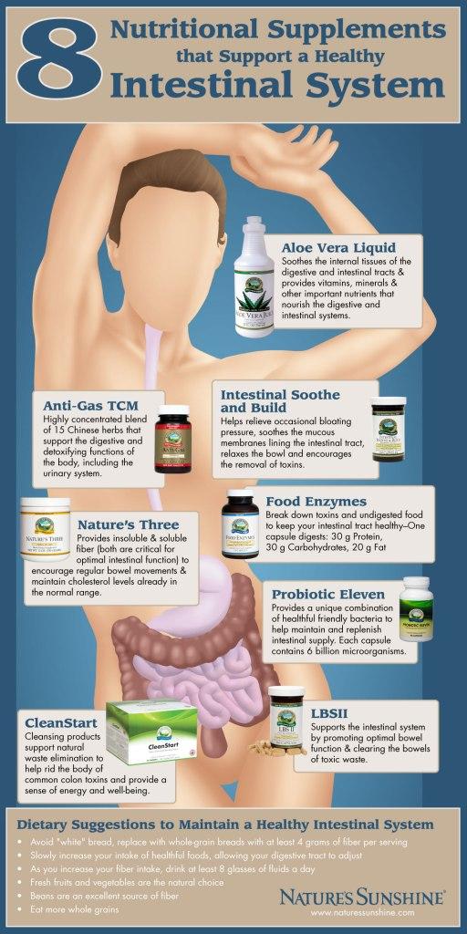 intestinal-graphic